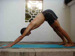 4 Downward dog push-ups