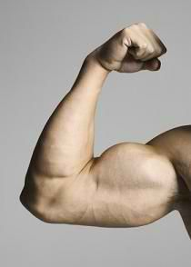 7 Biceps Curls