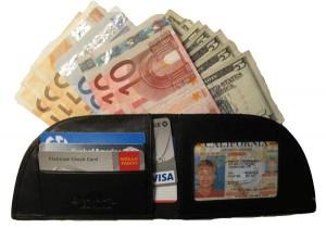 7 Rogue Wallet