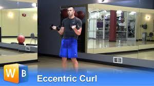 Eccentric Curl