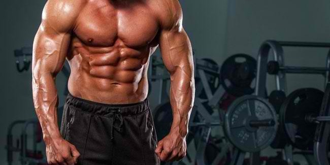 Top 10 Best Test Boosters to Maximize Muscle Growth