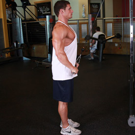 Straight Arm Pulldowns