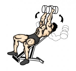 Inclined dumbbell flys